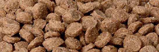 Hundefutter & Snacks