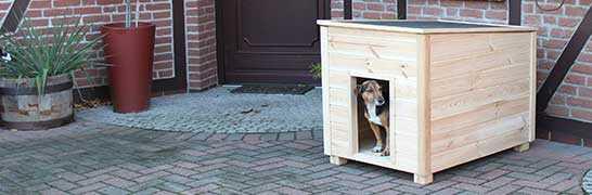 Hundehütte & Tür