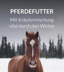 Pferdefutter Winter