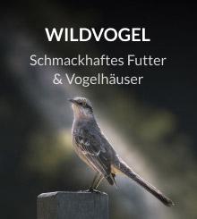Wildvogelfutter und Vogelhaus