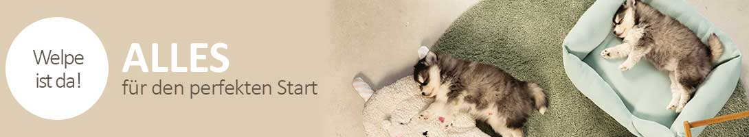 Zubehör für Hunde Welpen